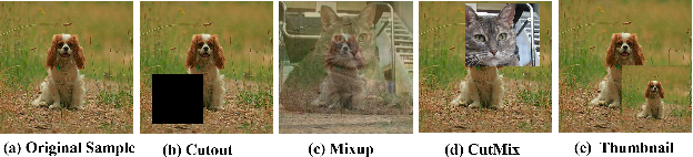 Figure 2 for Thumbnail: A Novel Data Augmentation for Convolutional Neural Network