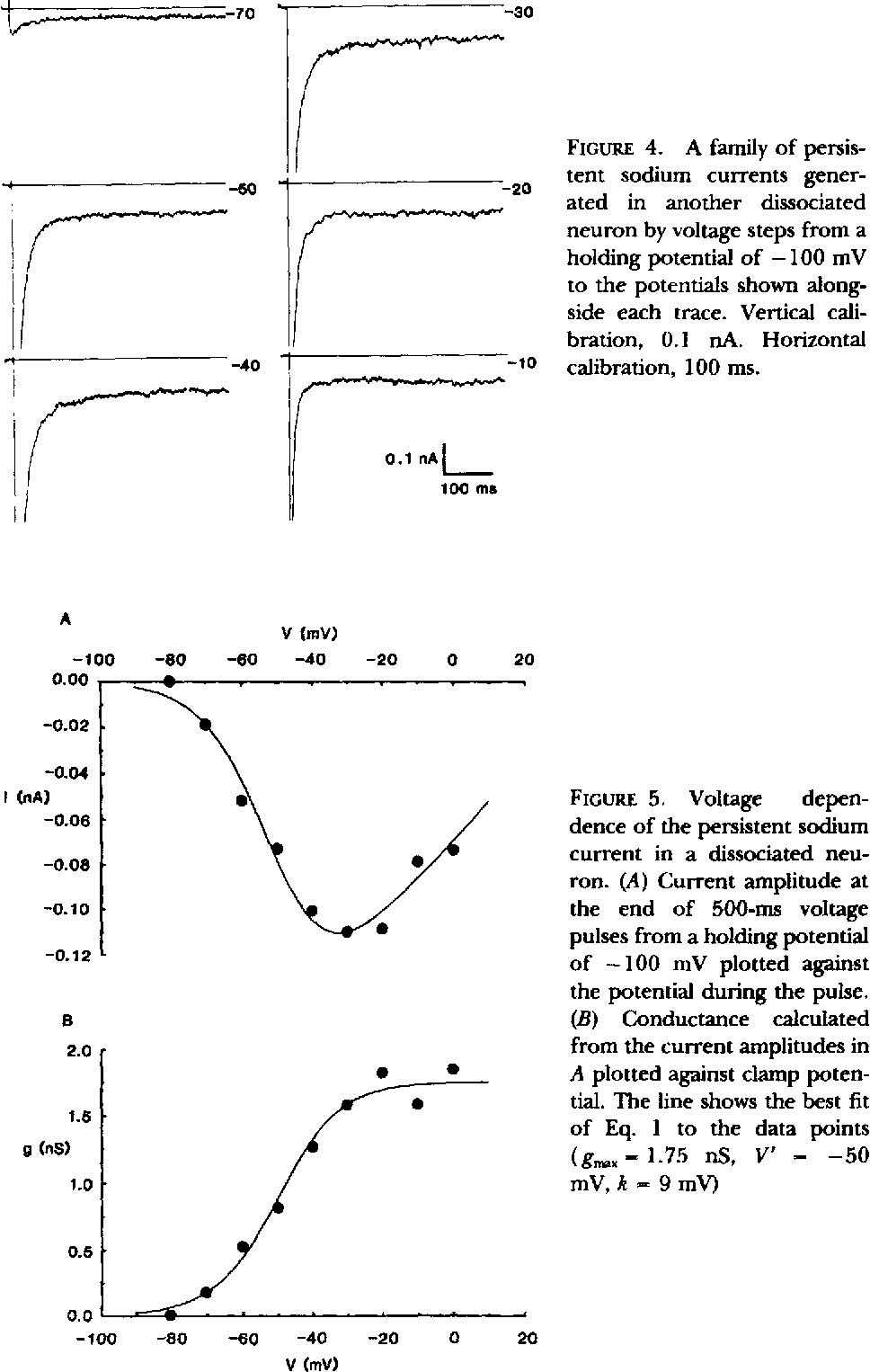 FIGURE 5. Voltage dependence of the persistent sodium current in a dissociated neuron. (A) Current amplitude at the end of 500-ms voltage pulses from a holding potential of - 1 0 0 mV plotted against the potential during the pulse. (B) Conductance calculated from the current amplitudes in A plotted against clamp potential. The line shows the best fit o f Eq. 1 to the data points (gm~-- 1.75 nS, V' - - 5 0 mV, k = 9 mV)