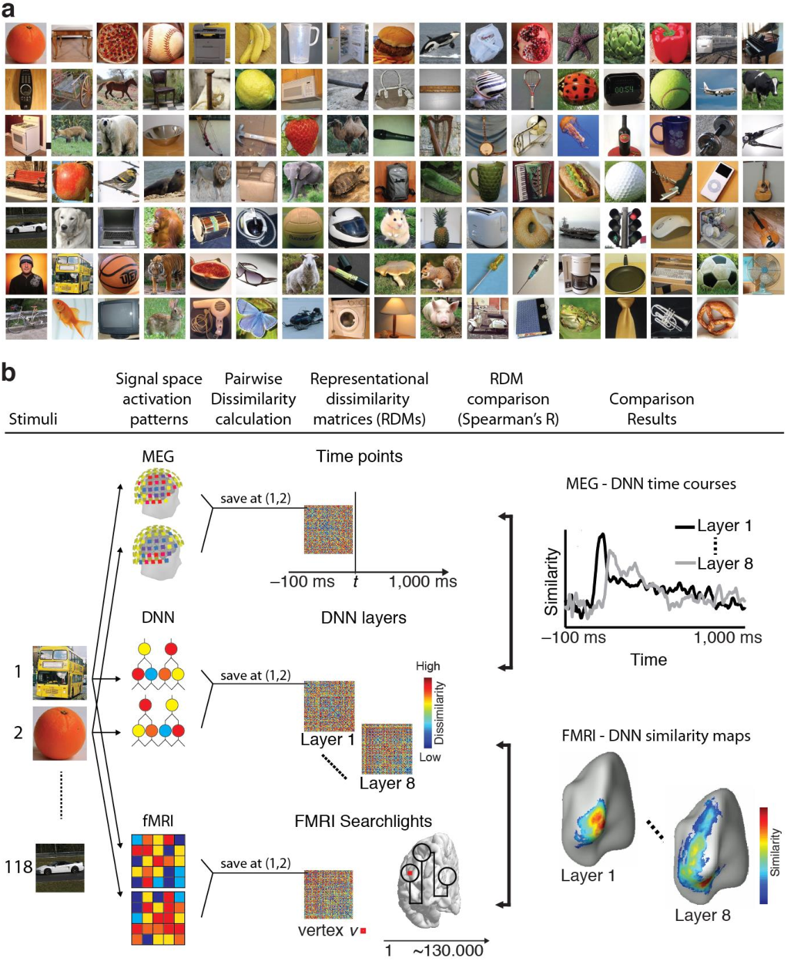 Figure 2 for Deep Neural Networks predict Hierarchical Spatio-temporal Cortical Dynamics of Human Visual Object Recognition