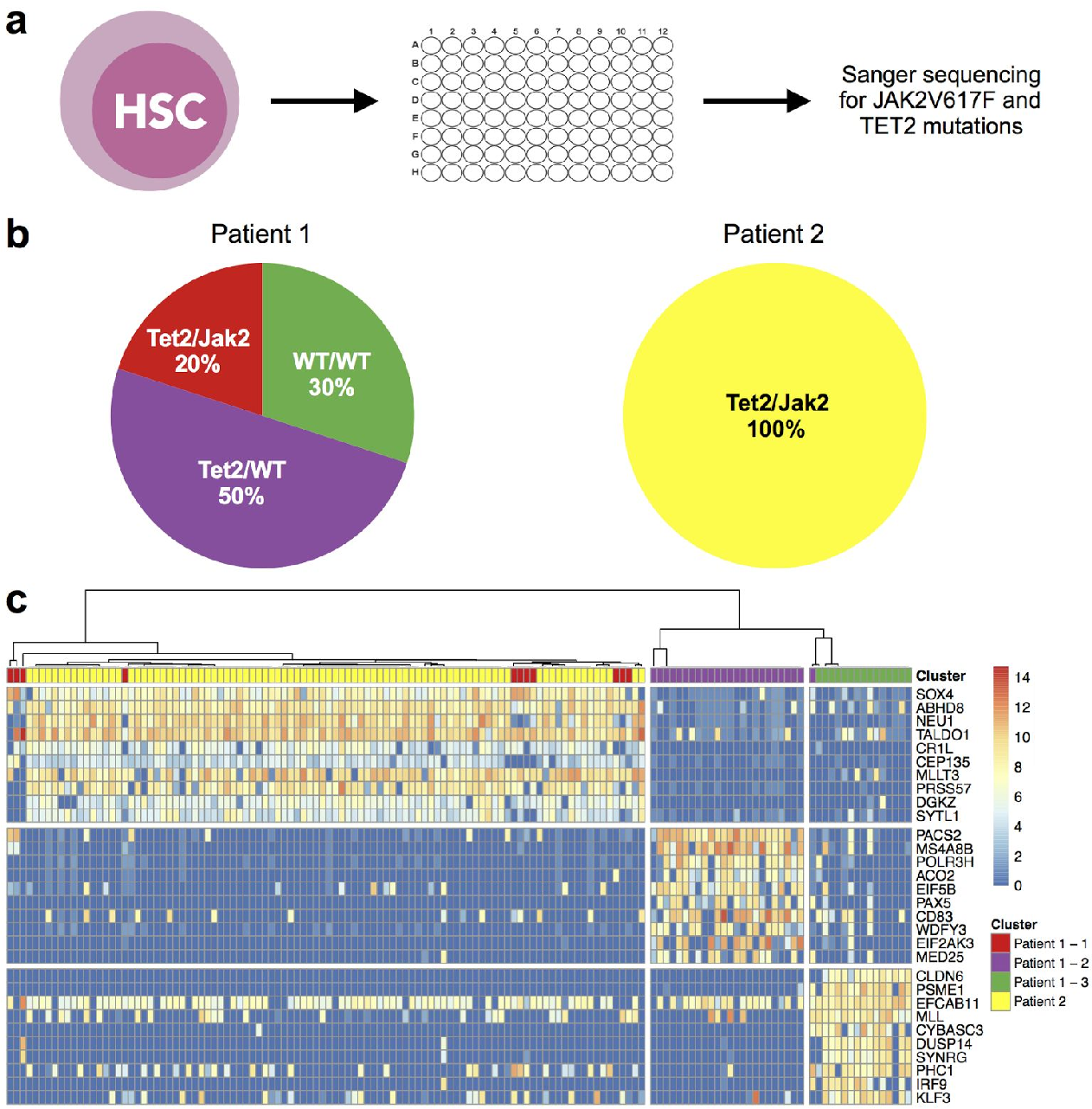 SC3 - consensus clustering of single-cell RNA-Seq data - Semantic