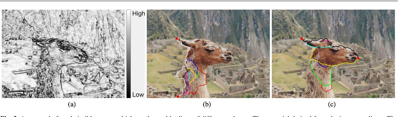 Figure 4 for Eikonal Region-based Active Contours for Image Segmentation
