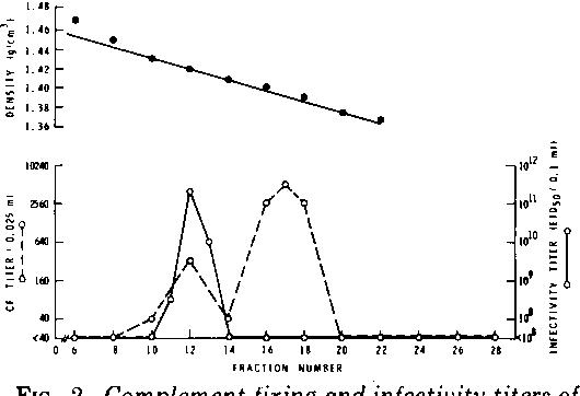 Figure 2 From Isolation And Characterization Of An Avian Adenovirus