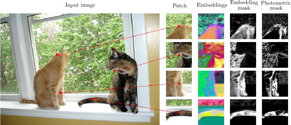 Figure 2 for Learning Dense Convolutional Embeddings for Semantic Segmentation
