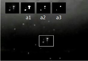Figure 4 for Multi-appearance Segmentation and Extended 0-1 Program for Dense Small Object Tracking