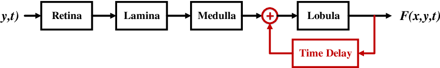 Figure 1 for A Feedback Neural Network for Small Target Motion Detection in Cluttered Backgrounds
