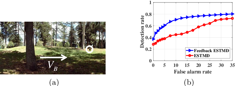 Figure 2 for A Feedback Neural Network for Small Target Motion Detection in Cluttered Backgrounds