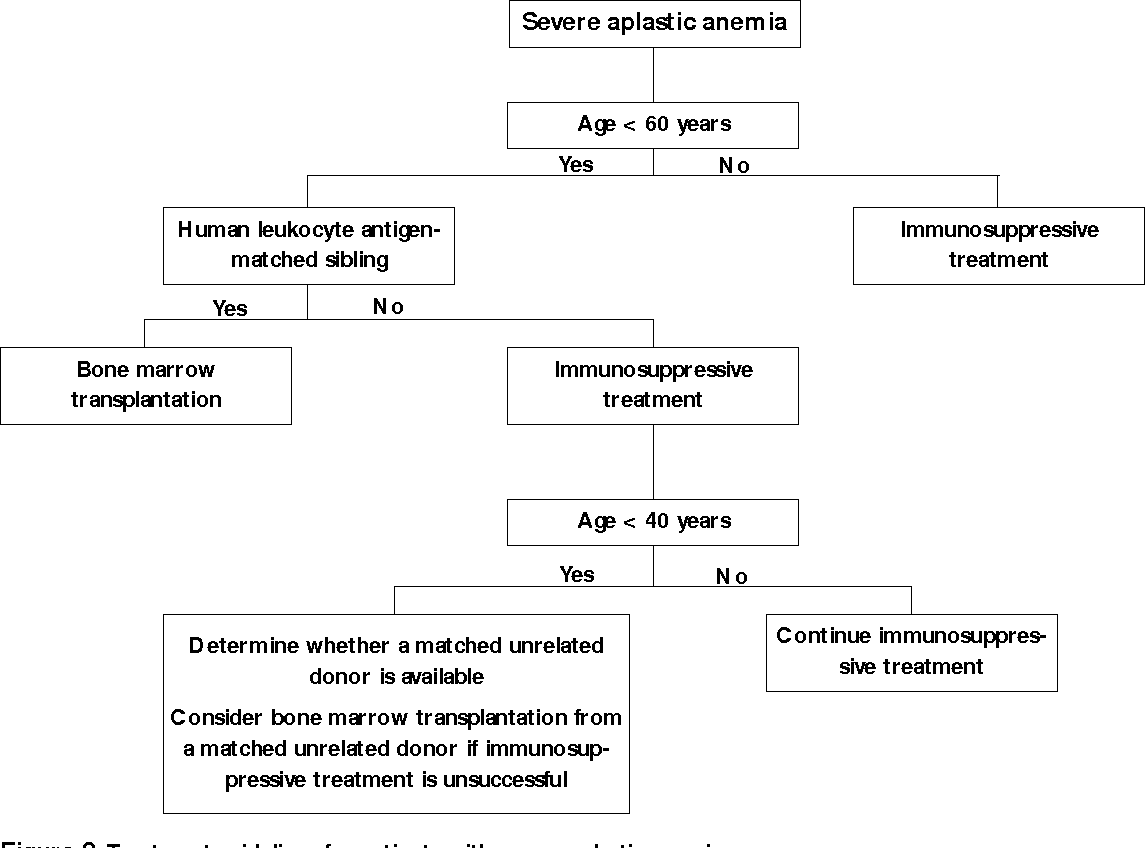 Figure 2. Treatment guidelines for patients with severe aplastic anemia.