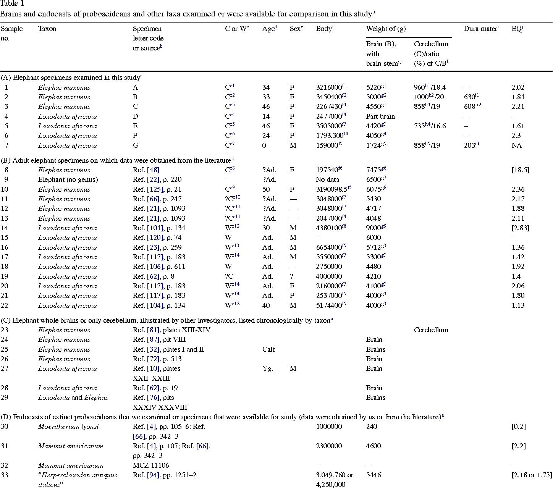 Table 1 from Elephant brain. Part I: gross morphology, functions ...