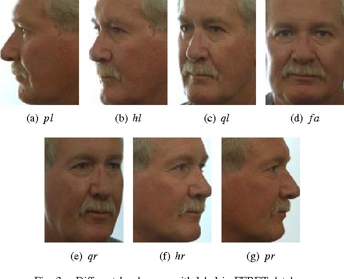 Figure 3 for Robust Head Pose Estimation Using Contourlet Transform