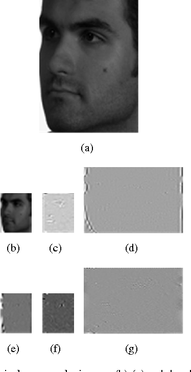 Figure 4 for Robust Head Pose Estimation Using Contourlet Transform