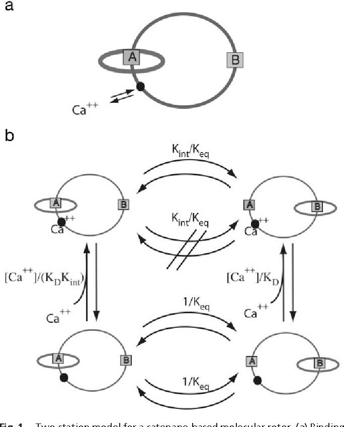 figure 1 from chemical peristalsis semantic scholar K Vanilla CA