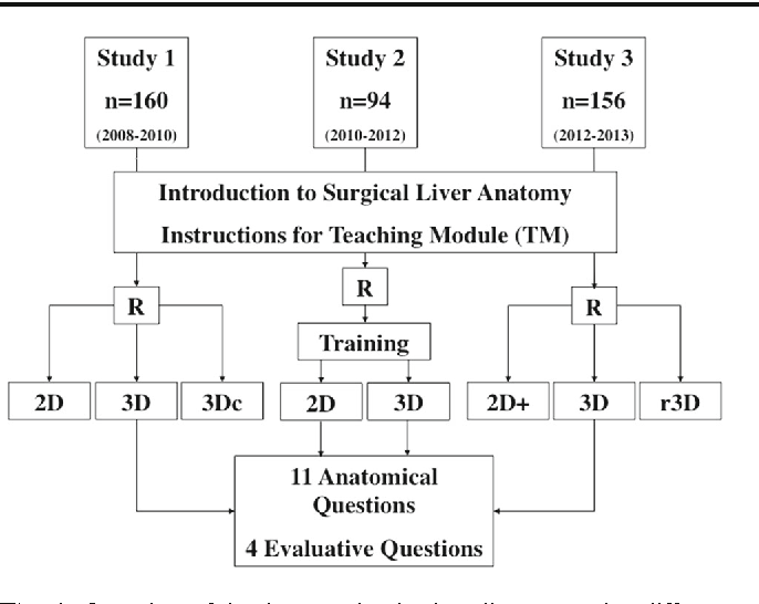 Successful learning of surgical liver anatomy in a computer-based ...