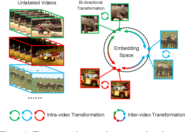 Figure 1 for Contrastive Transformation for Self-supervised Correspondence Learning