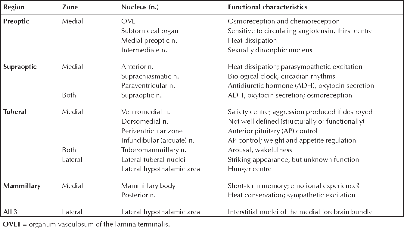 The anatomy and embryology of the hypothalamus in relation to ...