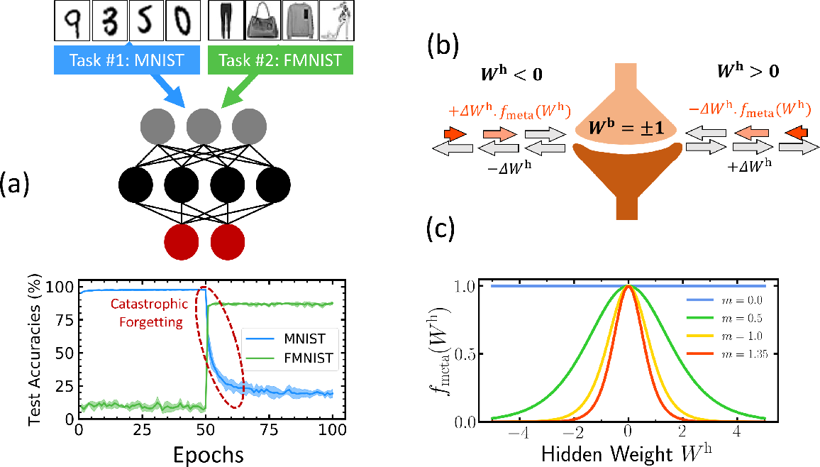 Figure 1 for Synaptic metaplasticity in binarized neural networks