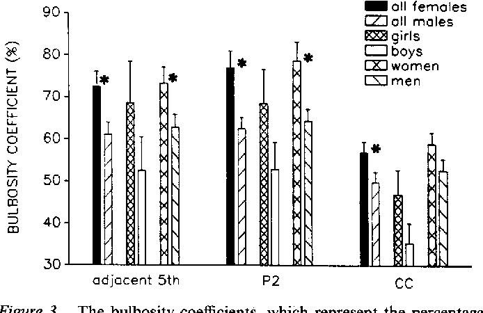 Allen richey sex differences corpus callosum