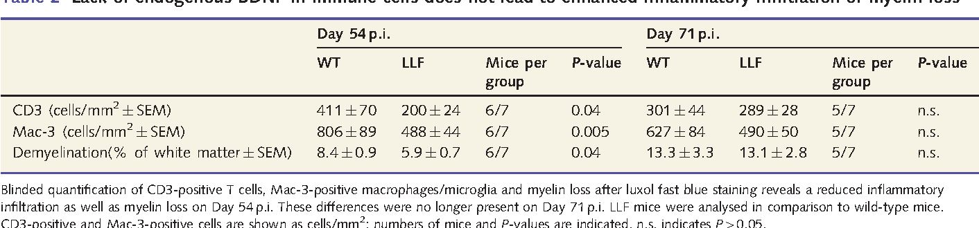 Table 2 Lack of endogenous BDNF in immune cells does not lead to enhanced inflammatory infiltration or myelin loss