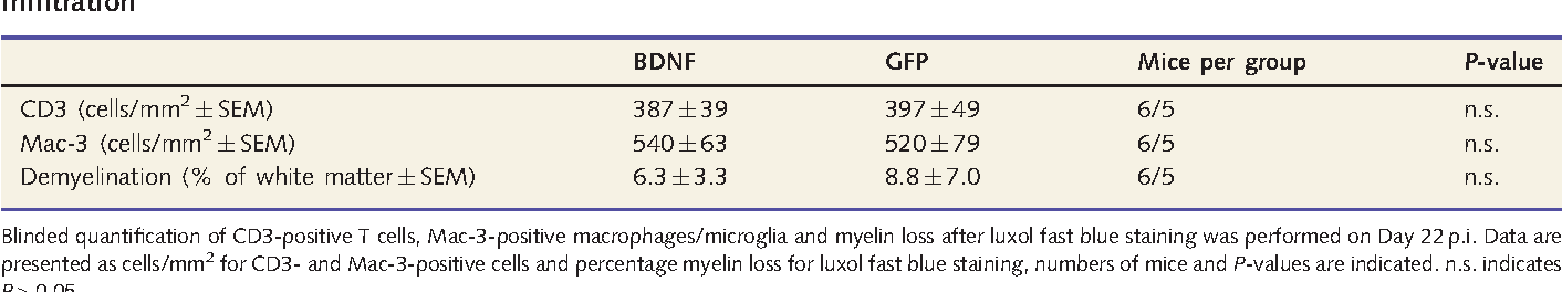 Table 4 Treatment of MOG-EAE with BDNF-overexpressing MOG-specific T cells does not influence inflammatory
