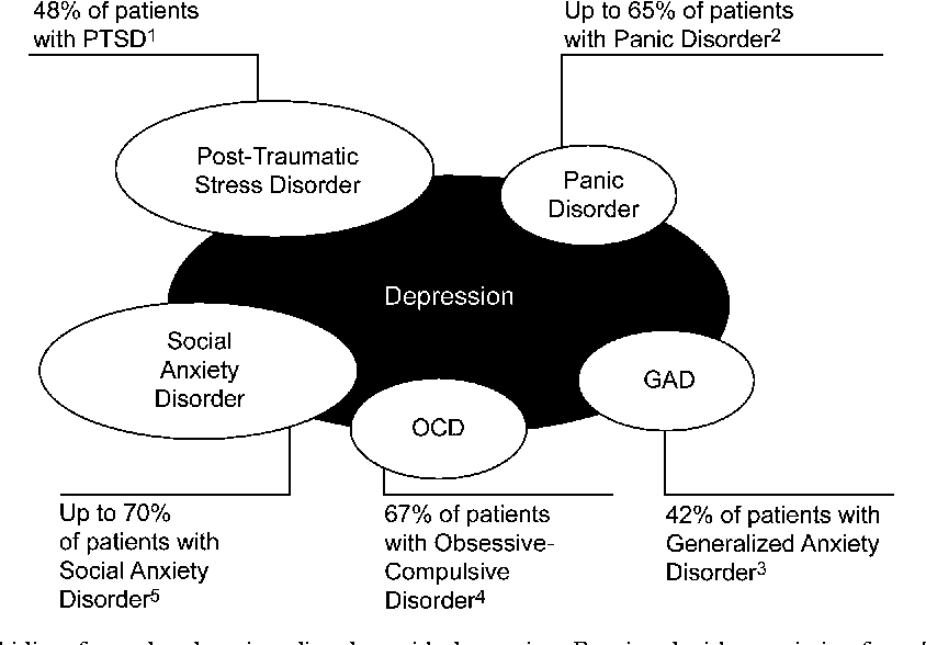 figure 1 from anxiety and oc spectrum disorders over life cycle amygdala ocd anxiety and oc spectrum disorders over life cycle