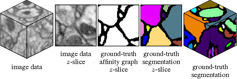 Figure 3 for Deep and Wide Multiscale Recursive Networks for Robust Image Labeling