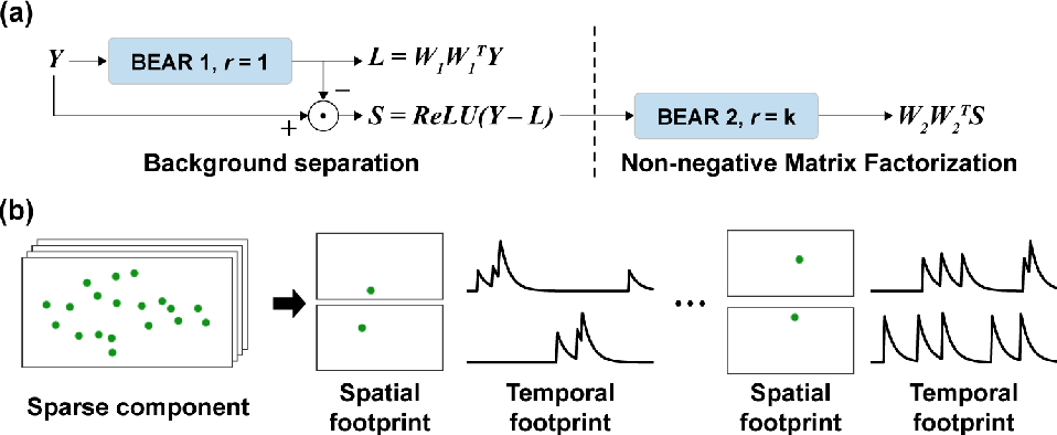 Figure 3 for Efficient Neural Network Approximation of Robust PCA for Automated Analysis of Calcium Imaging Data