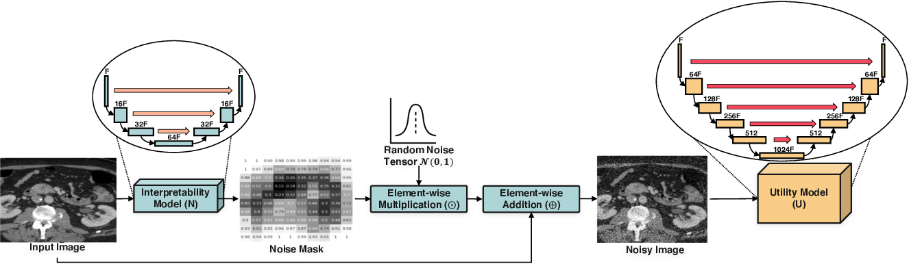 Figure 1 for U-Noise: Learnable Noise Masks for Interpretable Image Segmentation
