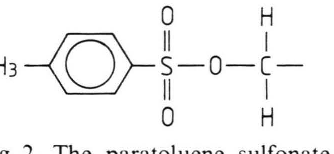 Fig. 2. The paratoluene sulfonate side groups R of TS (see Figure 1).