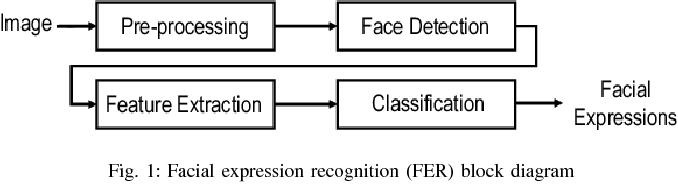 Figure 1 for Using Deep Autoencoders for Facial Expression Recognition