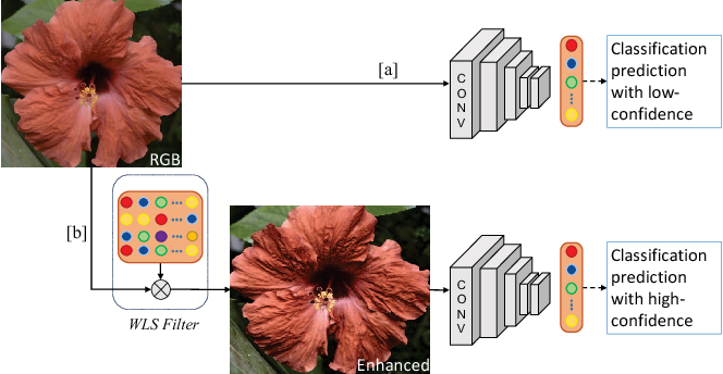 Figure 1 for Classification Driven Dynamic Image Enhancement