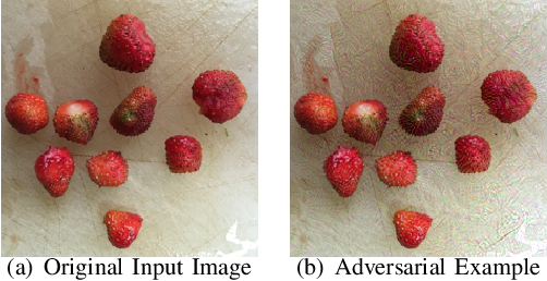 Figure 1 for Robustness of on-device Models: Adversarial Attack to Deep Learning Models on Android Apps