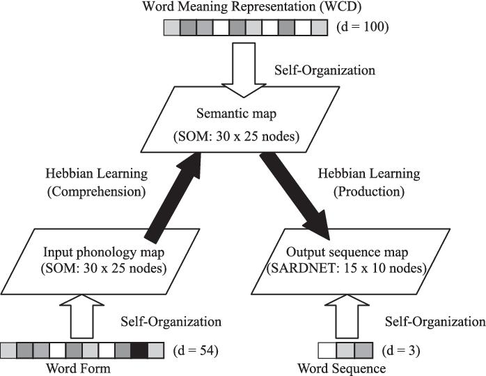 The Architecture Of DevLex II Model Each Three Self