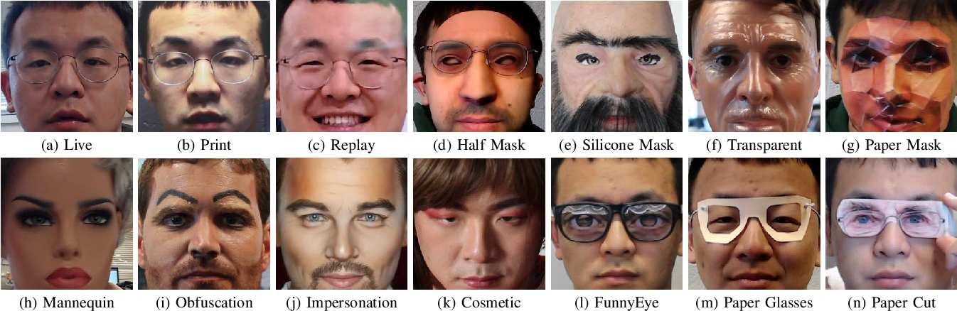 Figure 1 for Look Locally Infer Globally: A Generalizable Face Anti-Spoofing Approach