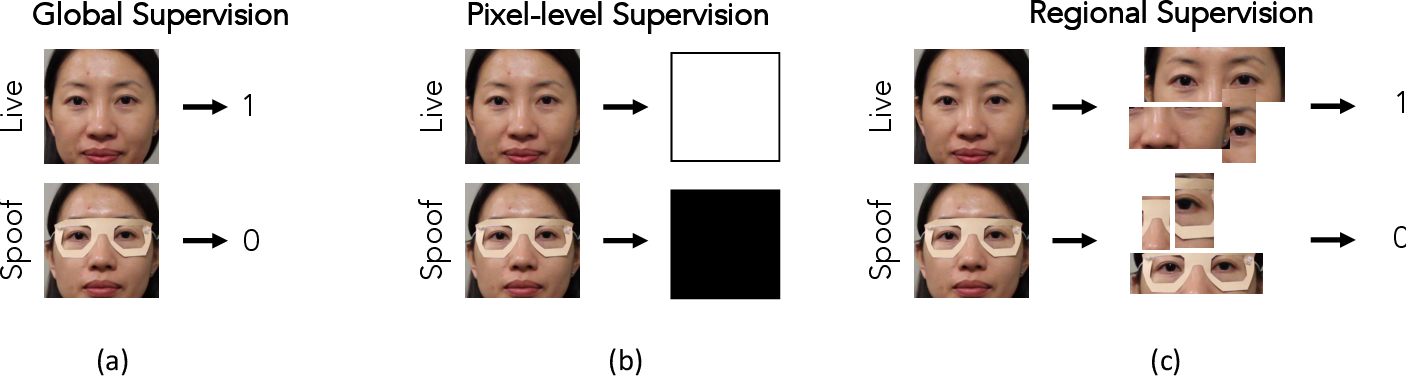 Figure 3 for Look Locally Infer Globally: A Generalizable Face Anti-Spoofing Approach