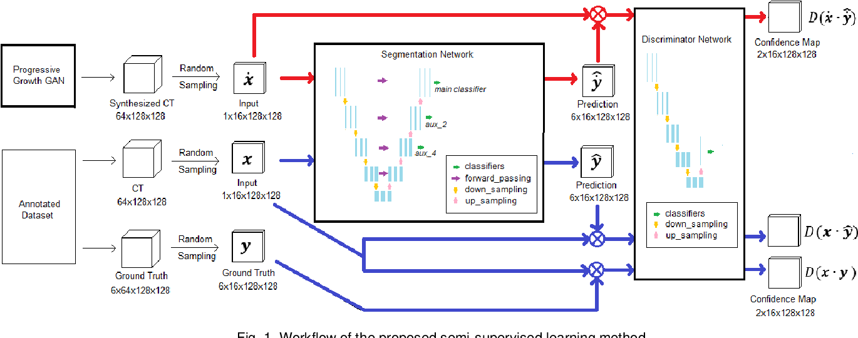 Figure 1 for Semi-supervised Semantic Segmentation of Organs at Risk on 3D Pelvic CT Images