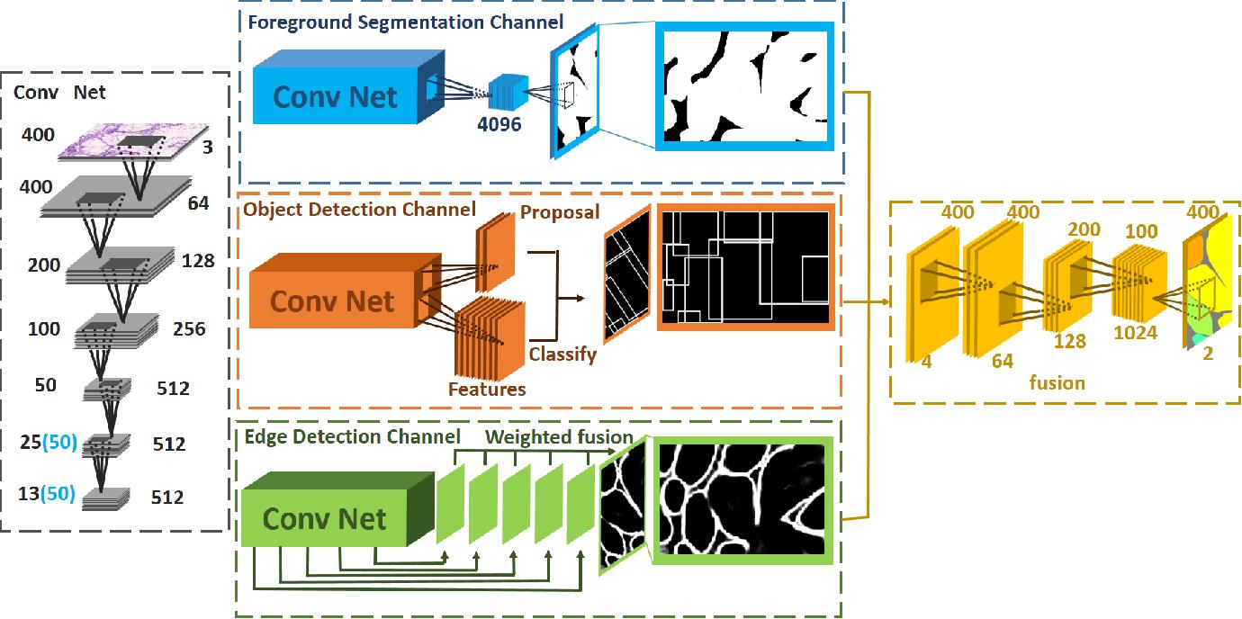 Figure 3 for Gland Instance Segmentation by Deep Multichannel Neural Networks