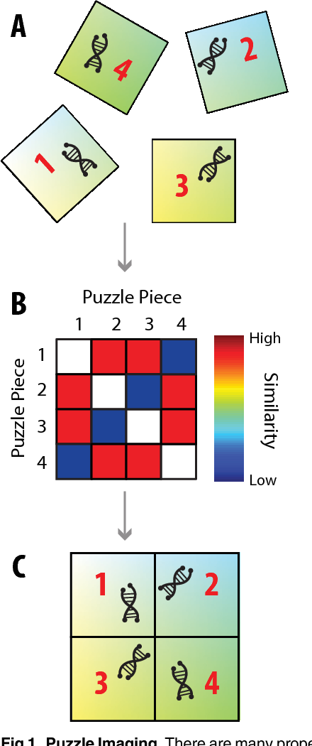 Figure 1 for Puzzle Imaging: Using Large-scale Dimensionality Reduction Algorithms for Localization
