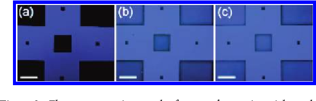 Figure 3. Fluorescence micrograph of repeated stamping trials on three separate areas of a silicon substrate coated with a 20 nm thick film of spiro-TPD. Dark areas indicate where material has been removed after the first (a), second (b), and third (c) patterning attempts with a single PDMS stamp. Scale bars represent a distance of 500 μm.