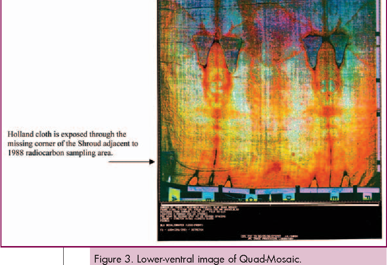 Radiocarbon dating of the shroud of turin nature conservancy