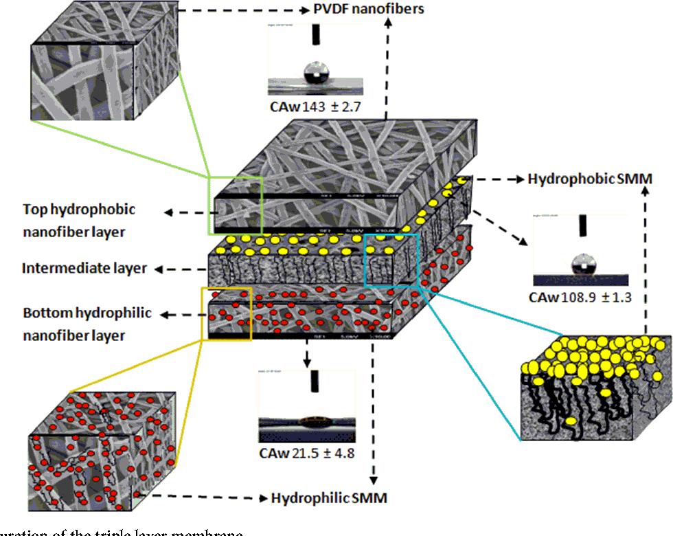 Figure 1   The configuration of the triple layer membrane.