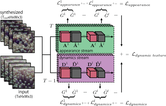 Figure 2 for Two-Stream Convolutional Networks for Dynamic Texture Synthesis
