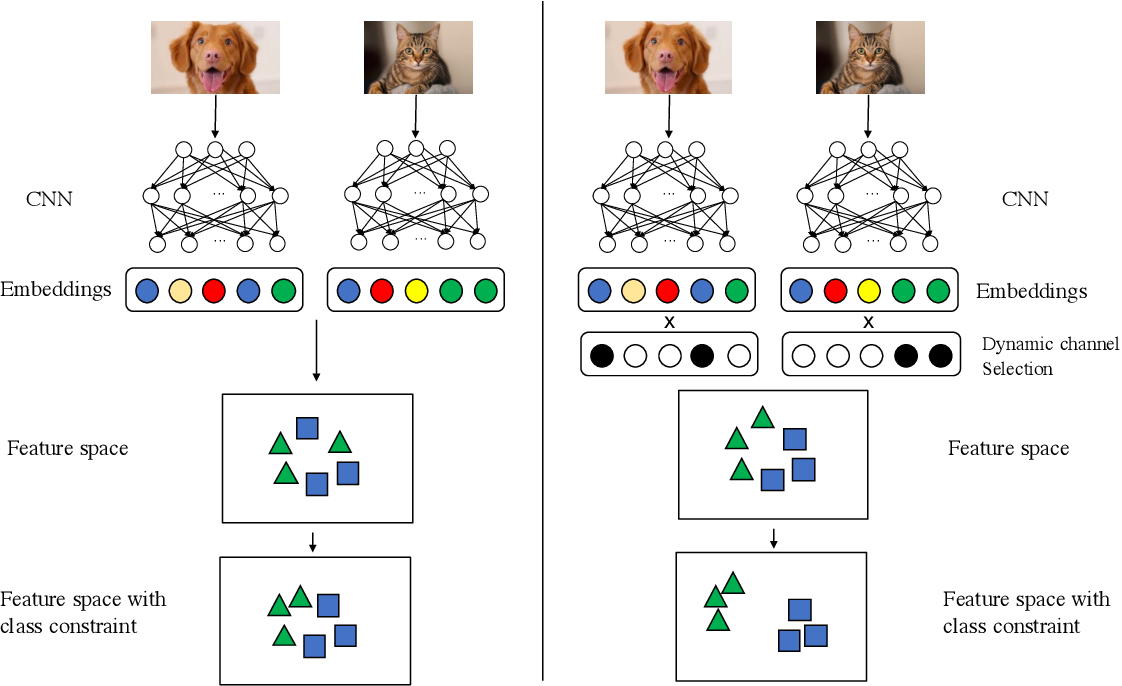 Figure 1 for CC-Loss: Channel Correlation Loss For Image Classification