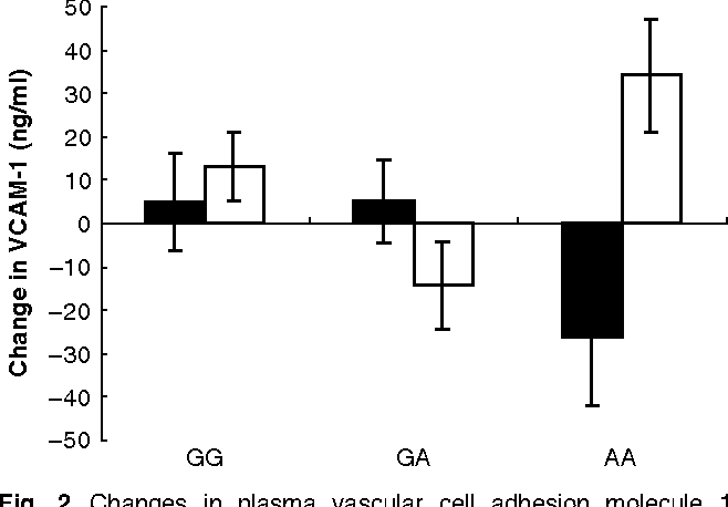 Fig. 2. Changes in plasma vascular cell adhesion molecule 1 (VCAM-1) according to oestrogen receptor b AluI genotype (GG, GA, AA) for healthy post-menopausal women following treatment with isoflavones (&) and placebo (K). For details of subjects and procedures, see p. 109. Values are means with their standard errors represented by vertical bars. The genotype · treatment interaction was significant (linear mixed-modelling approach; P = 0.023). Differences from baseline (only subjects with no missing data points included in the analysis) were used as the response variable. There was no significant difference between treatments for the GG genotype group (n 46) or the AG genotype group (n 47), but there was a significant treatment effect in the AA genotype group (n 18; slice test; P = 0.016).