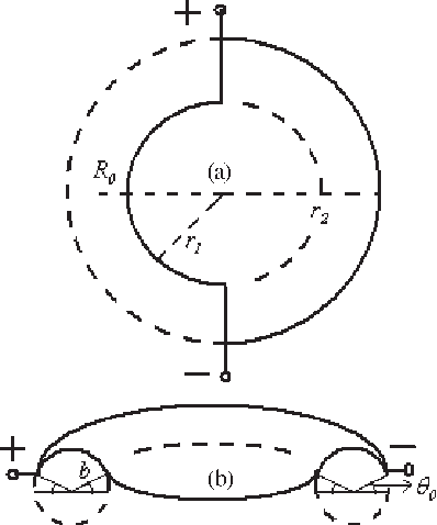 Fig. 1. Schematic representations of our diagnostic instrumentation which is installed on outer surface of IR-T1 tokamak. (a) Top view. (b) Side view.