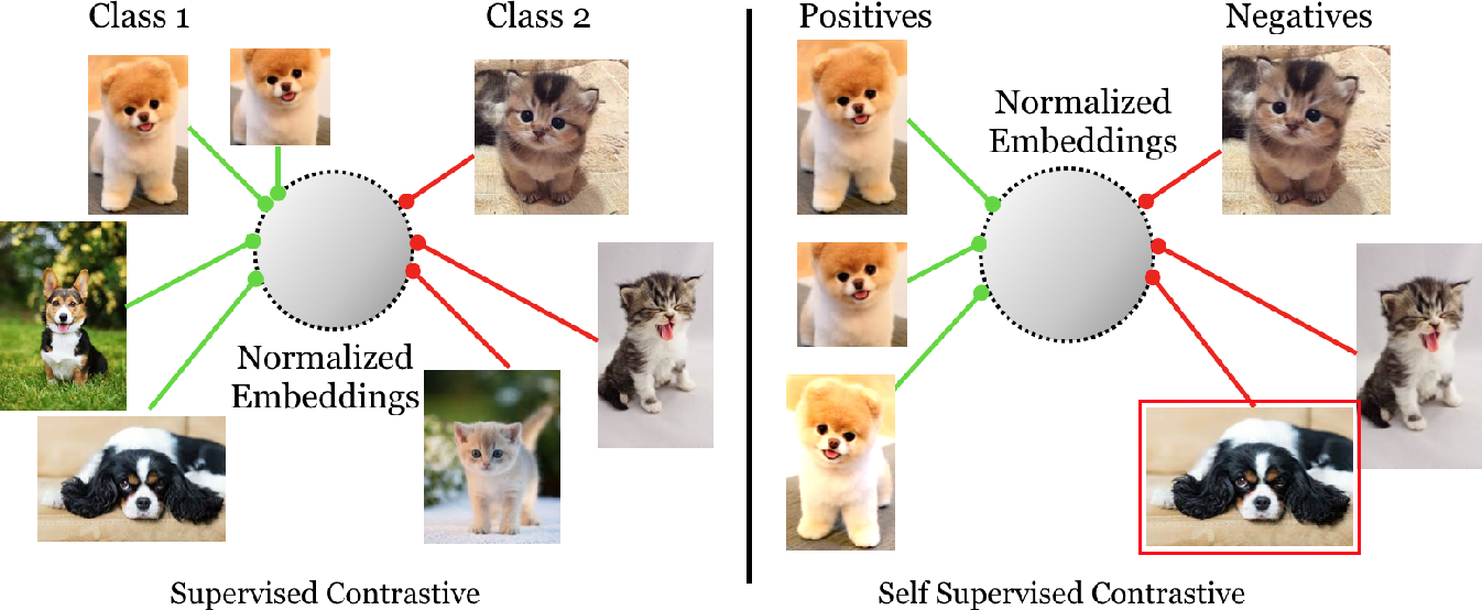 Figure 3 for Supervised Contrastive Learning