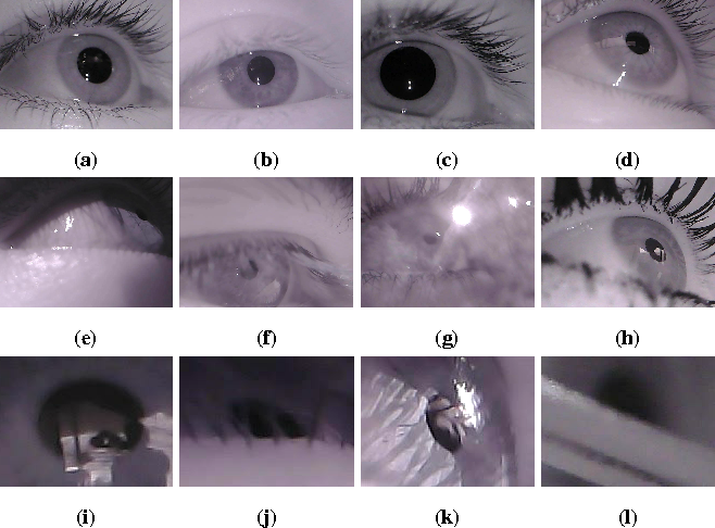 Figure 1 for Labeled pupils in the wild: A dataset for studying pupil detection in unconstrained environments