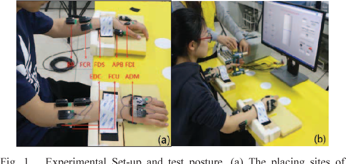 Fig. 1. Experimental Set-up and test posture. (a) The placing sites of electrodes and the posture of relaxation (b) Stable contraction with a visual feedback.