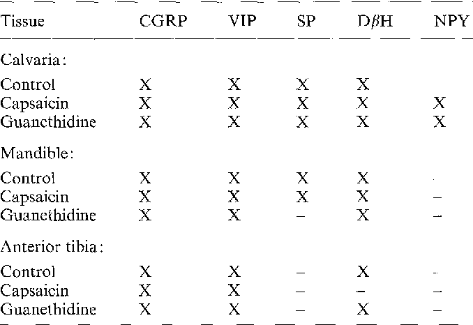 Distribution Of Cgrp Vip Dh Sp And Npy Immunoreactive