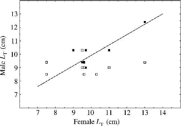 Corythoichthys flavofasciatus - Semantic Scholar