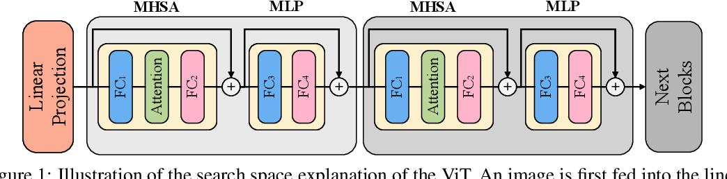 Figure 1 for Vision Transformer Architecture Search