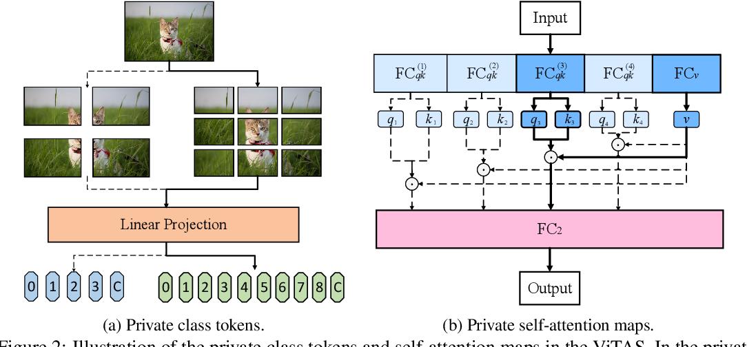 Figure 3 for Vision Transformer Architecture Search
